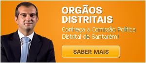 http://psdsantaremdistrital.net/pt/menu/387/orgaos-distritais.aspx